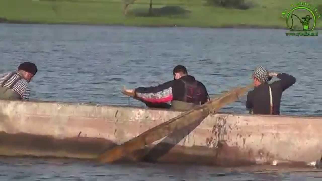 ловля толстолобика на поплавок видео