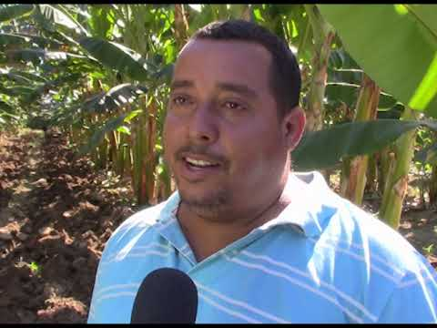 Redoblan esfuerzos para concluir con éxito campaña de frio en Manuel Tames