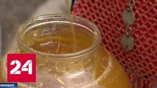"""Башкирские пасечники соберут урожай меда от """"правильных пчел"""""""