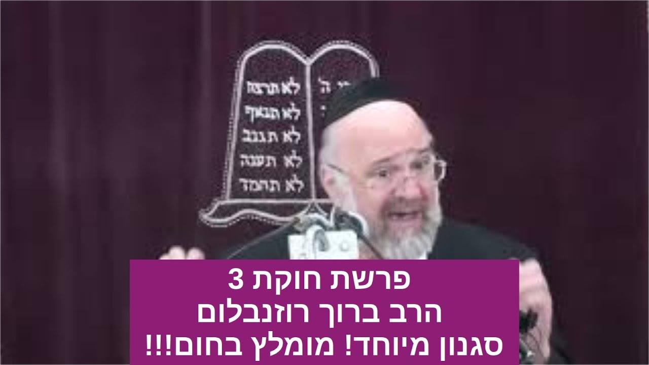 הרב רוזנבלום חוקת 3 תשעח - הרב רוזנבלום חוקת שיעור ברמה גבוהה!! Rabbi Rosenblum Chukat 3