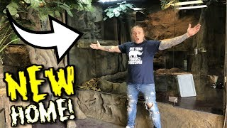 20 FOOT SNAKE GETS MASSIVE NEW CAGE!! | BRIAN BARCZYK