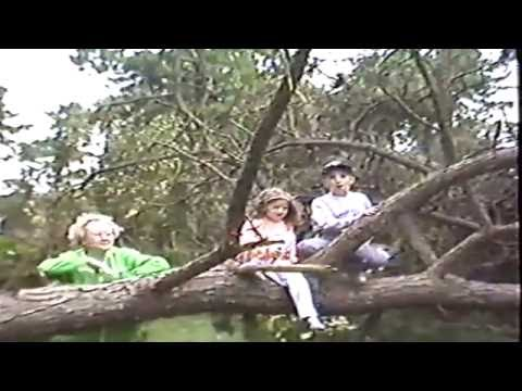 Hurricane Bob August 1991