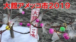 400年以上続く伝統行事「大館アメッコ市」に行って来た 秋田犬のパレードなど Festival of the candy of Odate-shi