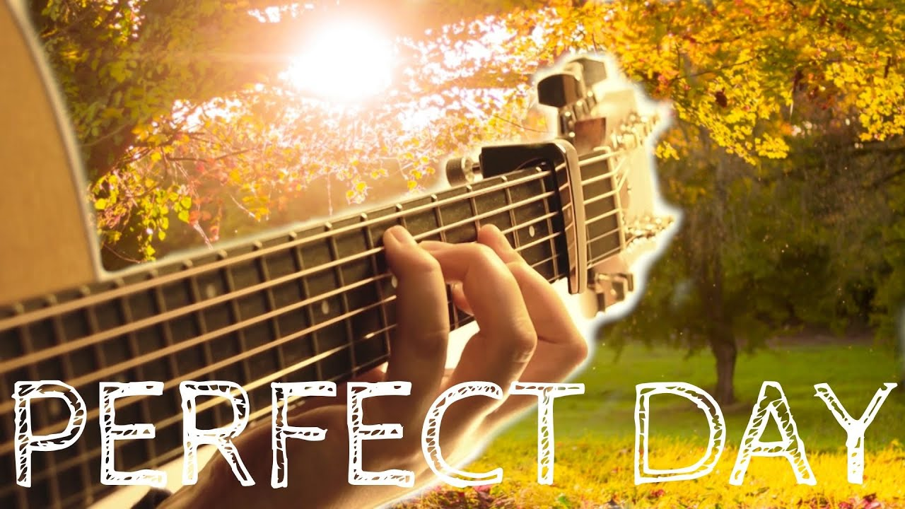 Lou Reed Perfect Day Fingerstyle Acoustic Guitar Taylor 314ce