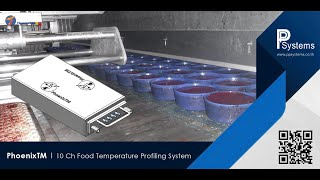 FOS-14-060-10 PhoenixTM 10 Ch Food Temperature Profile System - Special Jig Design 2.5m l PP Systems
