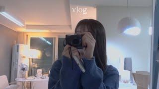 (snb) vlog 청년대출 받아서 서울에 자취방 구하…