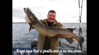 Гости из Москвы  Рыбалка на озере  Часть вторая