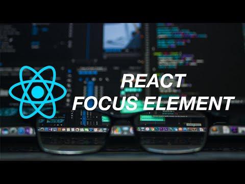 How to focus element in React - CodePulse