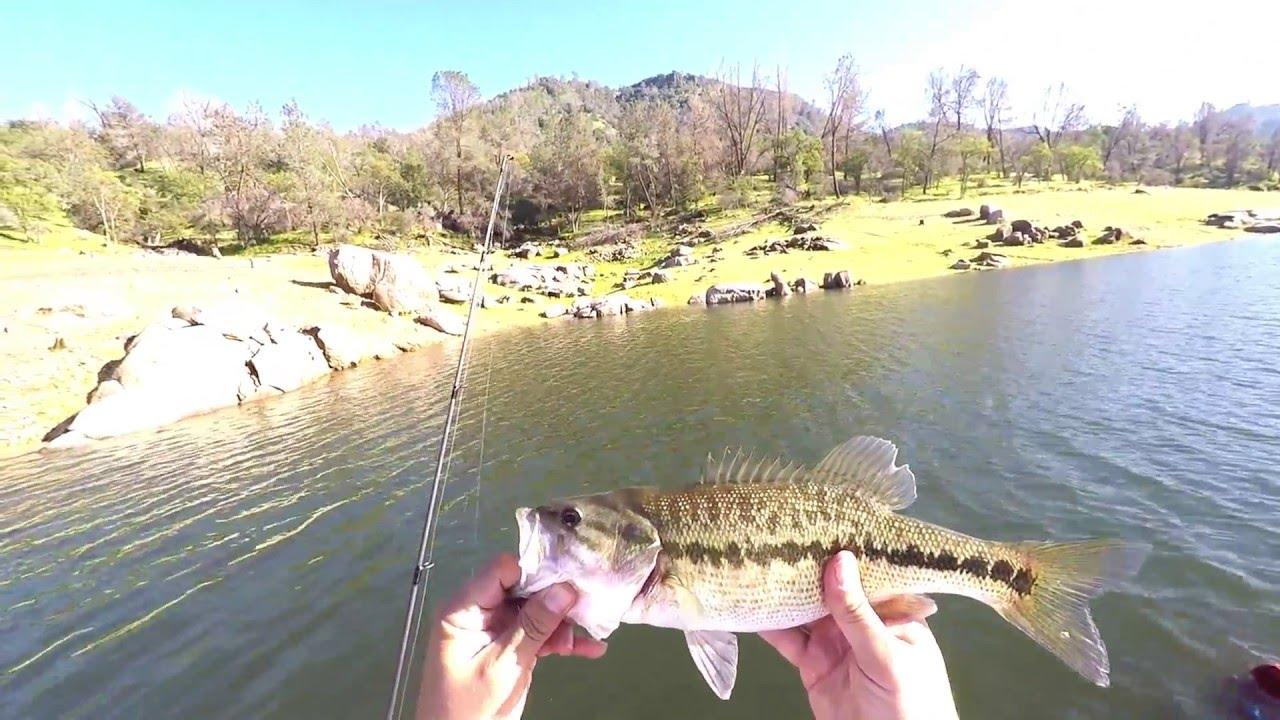 Bass fishing pre spawn fishing tips millerton lake for Millerton lake fishing