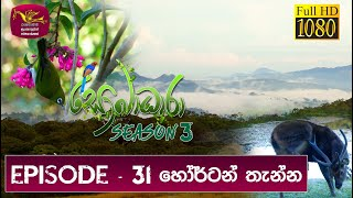 Sobadhara - Sri Lanka Wildlife Documentary | 2019-10-25 | ( හෝර්ටන් තැන්න ) Horton Plains Thumbnail