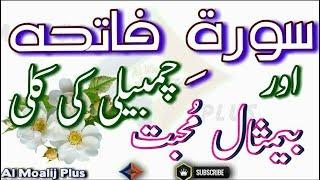 Video Muhabbat Ka Best Amal || Chambeli Ki Kali Aor Soorah e Fateha Ka Mujarab Amal || By Al Moalij Plus download MP3, 3GP, MP4, WEBM, AVI, FLV Juli 2018