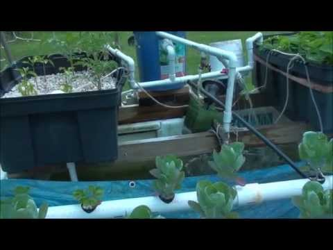 Hot Tub Aquaponics: New Bio Filter Design And Plumbing