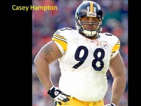 The 2009 2010 Pittsburgh Steelers