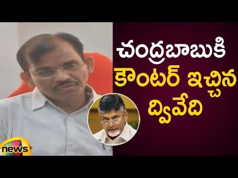 Gopala Krishna Dwivedi Strong Counter To Chandrababu Naidu In Press Meet | AP Political Updates