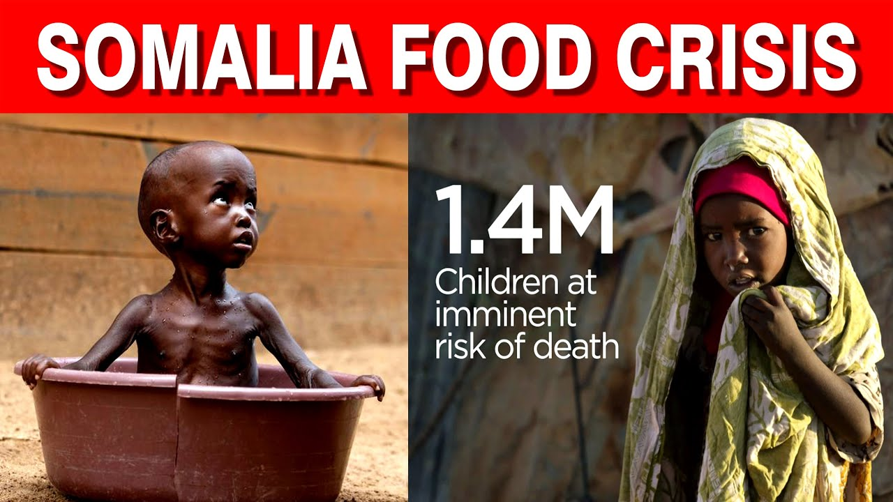 Somalia in Tamil