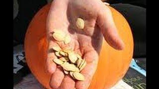 Семечки тыквы ~ лечебные свойства, калорийность