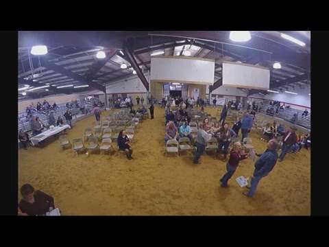 2018 CCISD Livestock Auction