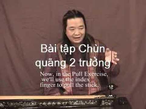 DAN BAU SELF LEARNING-Tu hoc DAN BAU(DVD+Book)獨弦琴