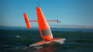 How a fleet of wind powered drones is changing our understanding of the ocean Sebastien de Halleux