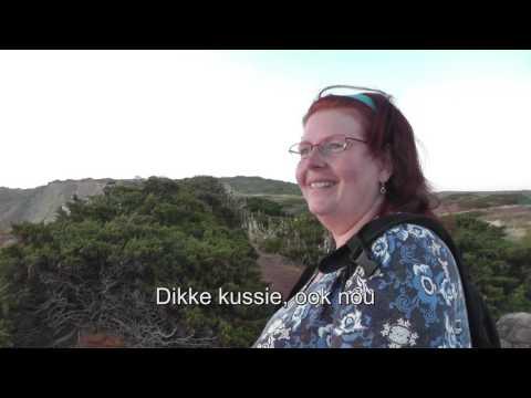 Mama Appelsap in Portugal (Portugees mama appelsap liedje)