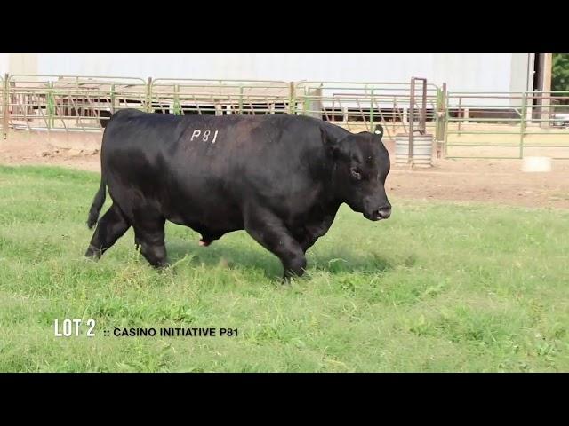 Dal Porto Livestock and Rancho Casino Lot 2
