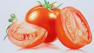 Tomato speed drawing - Prismacolor Pencils
