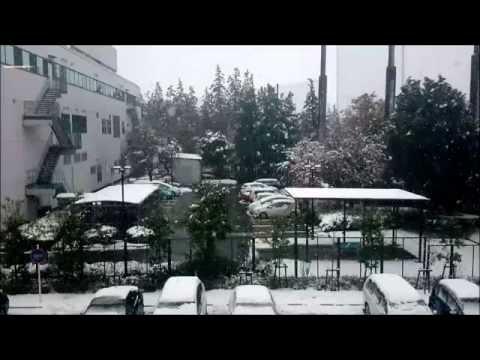 Japan 365 - November Snowfall