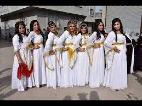 OMUZ HALAYI paris sosyete KURT düğünü mütiş oyun  Dance at Wedding
