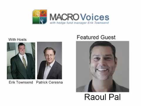 MacroVoices Interview with Raoul Pal - Janaury 19, 2017