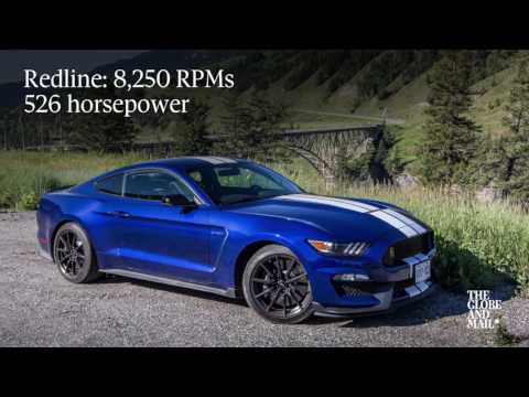Ford Shelby Mustang GT350 goes in search of the real Canadian wild mustang