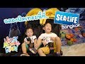 ฉลองปิดเทอมกันที่ SEA LIFE Bangkok | Happy Mommy Diary