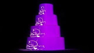 3d mapping на торт и свадебное платье. Проекция на свадебном платье Украина. Заказать проекцию.