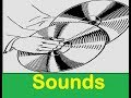Metal Clang Sound Effects All Sounds