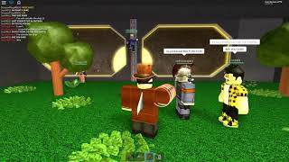 Roblox Innovation Inc. Bee Ending Freeze Down