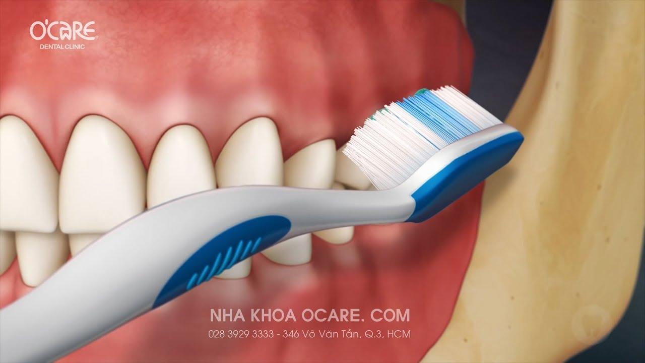 Hướng dẫn đánh răng hàm trong đúng cách