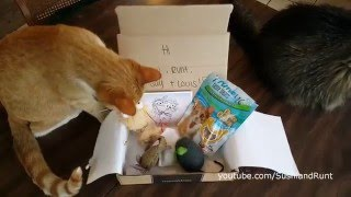 meowbox Unboxing - Cat Subscription Box - April 2016 thumbnail