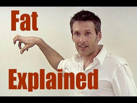 Fat - Fact and Fiction