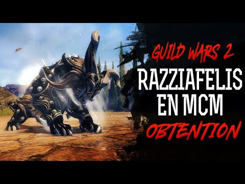 GUILD WARS 2 - Obtenir son Razziafelis en McM thumbnail