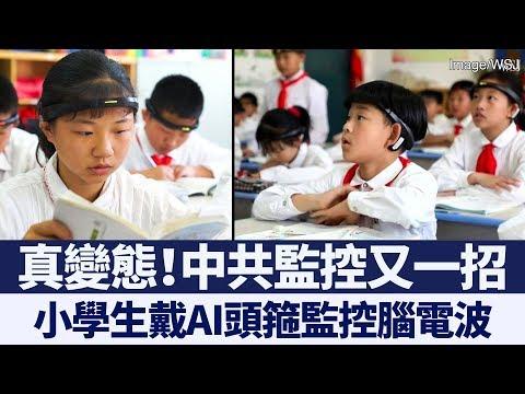 中共真變態!拿小學生實驗監控腦電波遭輿論撻罰|新唐人亞太電視|20191108