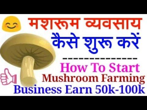 How To Start Mushroom Farming Business