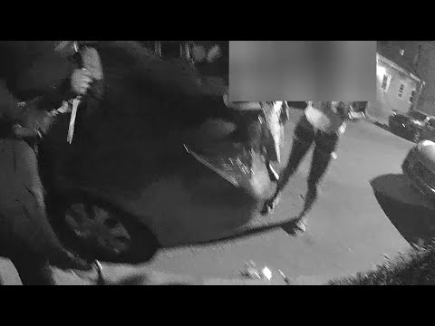 woman-stabs-two-cops-(warning:-graphic-content)