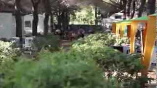 Camping Ville Degli Ulivi - Elba - Italië