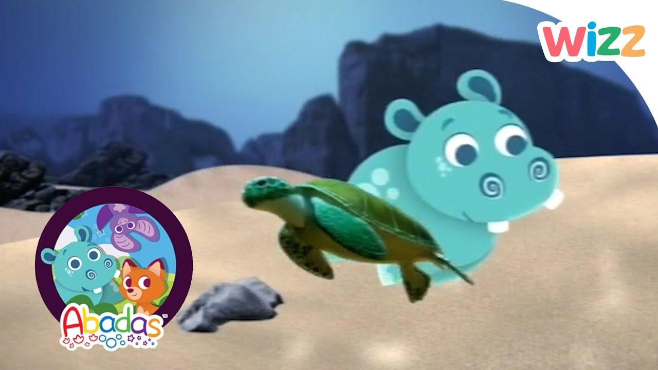 sea turtles nursery themes best turtle 2018