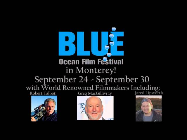 BLUE Film PSA Travel Video
