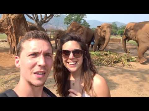 VLOG HONEYMOON DAY 10 | ELEPHANT NATURE PARK