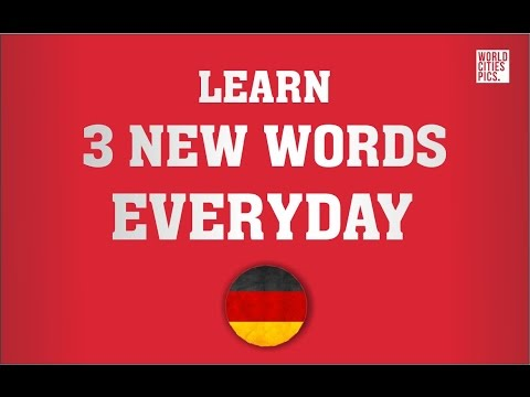 German - learn 3 new words every day