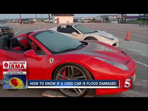 Harvey Puts Flood Damaged Cars In The Market