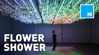 This Augmented Reality Art Exhibit Showers Visitors With Flowers