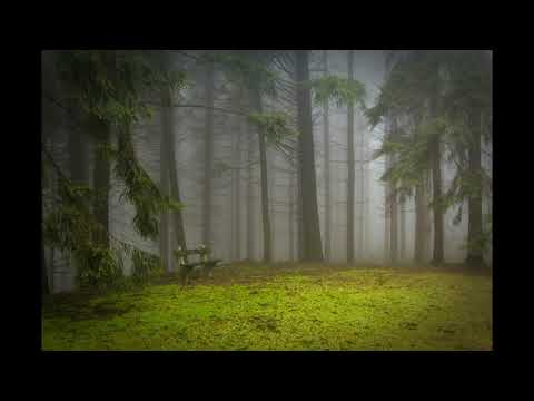 432 Hz - Best Classical Music - Pachelbel - Canon in D - Extended Version (60 minutes)