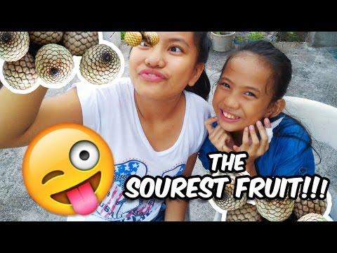 The Sourest Fruit Challenge ( Yantok / Rattan Fruit)